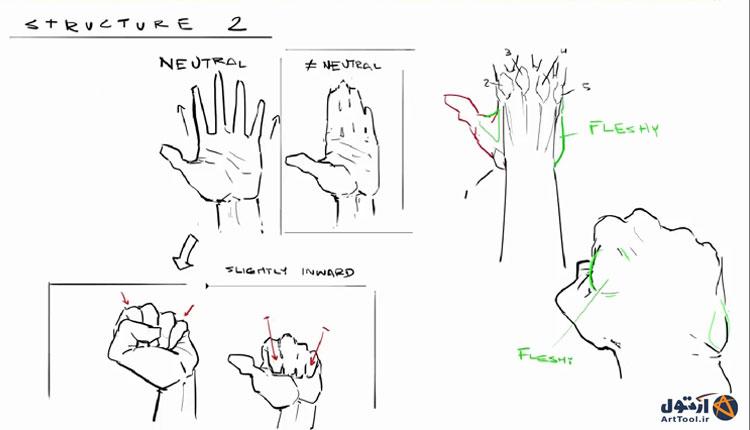 آموزش طراحی حالت های مختلف دست | نقاشی دیجیتال |طراحی دست | آموزش طراحی دیجیتال
