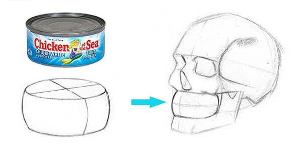 شناخت آناتومی لب نقاشی دیجیتال