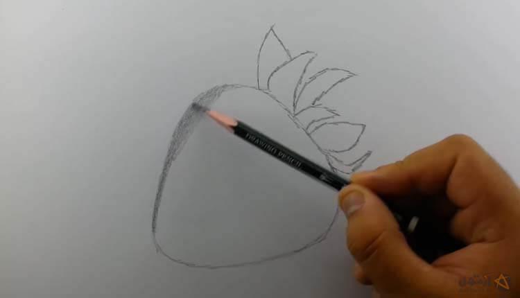 طراحی توت فرنگی - چگونه توت فرنگی طراحی کنیم ؟